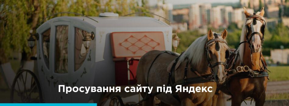 Продвижение Яндекс укр