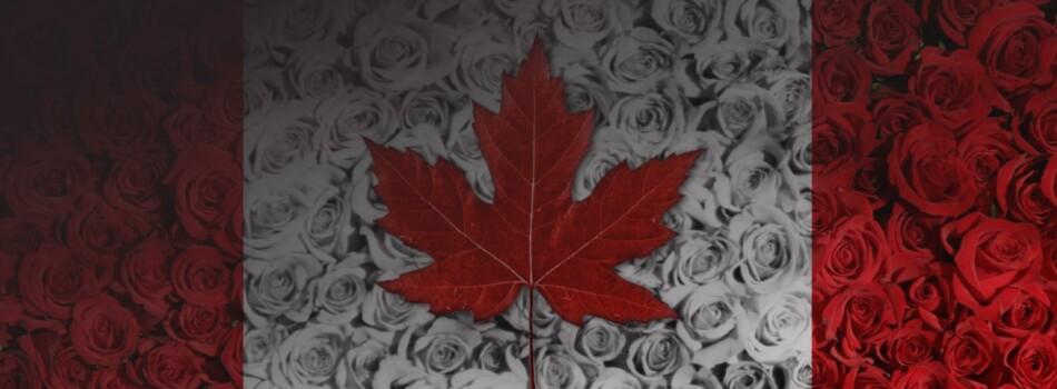Кейс Цветы Канада