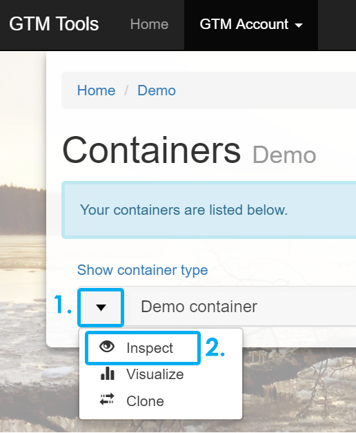 Google Tag Manager Demo container
