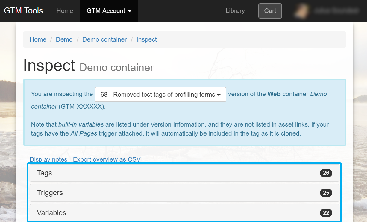 Google Tag Manager inspect container