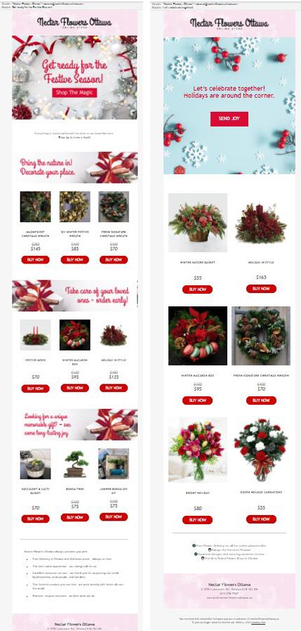Email цветы декабрь