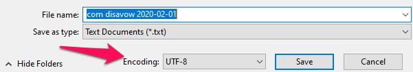 Disavow Tool encoding